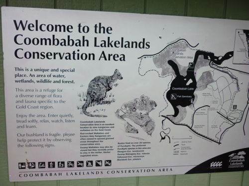 Coombabah Lakelands Conversation Area