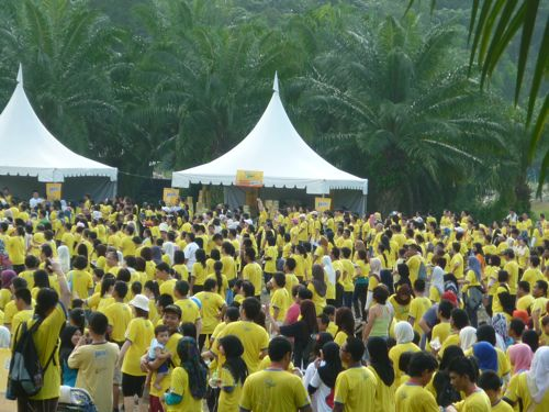 Crowd at Jacob's Walk of Life 2011
