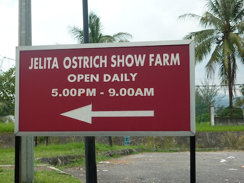 Jelita Ostrich Show Farm Sign