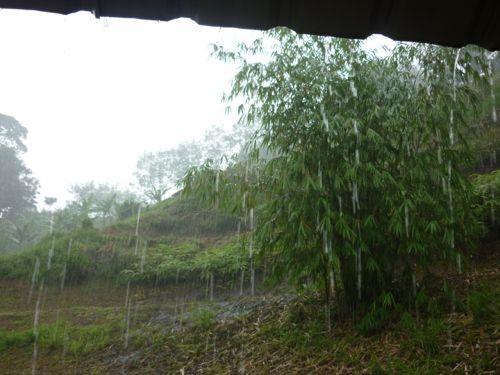 Raining at Cheringin