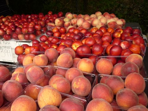 West End Markets - Peaches and Nectarines