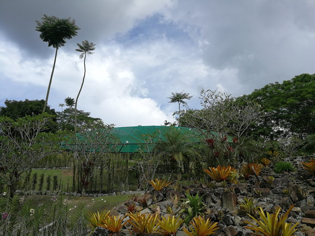 Orchid Park Kuching