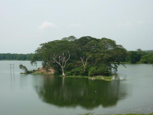 Kinta Nature Park Island