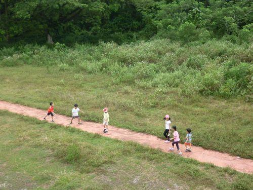 Kinta Nature Park Track