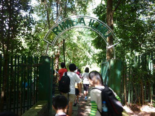Rimba Ilmu - Entrance
