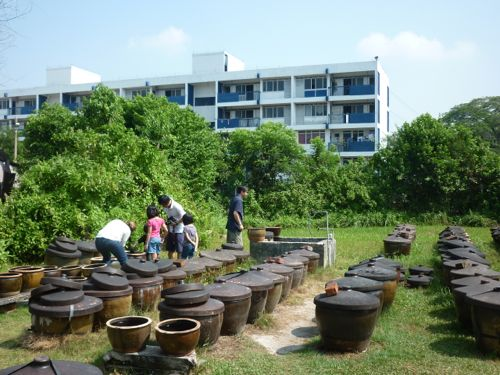 Soy Sauce Factory Compound